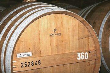 Recordomzet voor cognac