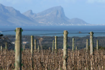 Duurder segment Zuid-Afrika in trek