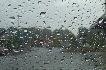 Spaanse wijnboer snakt naar regen