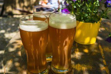 Bierdrinker voorspelt: nog meer alcoholvrije soorten
