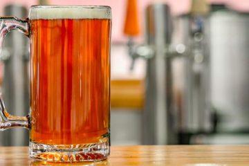 Staat investeert in Haarlems bier